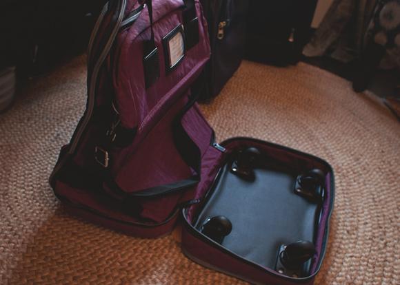 biaggi zipsak foldaway luggage