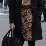 Leopard Joe Fresh dress and J.Crew lady day coat | Delayed Missives fashion blog by Alexandra Shook